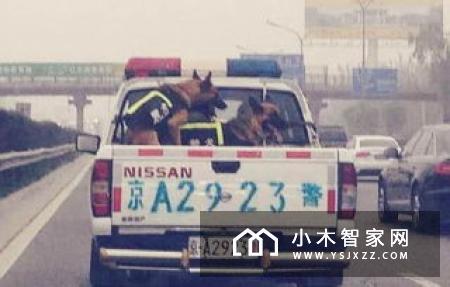 """小爱同学上线""""实时查公交""""功能"""